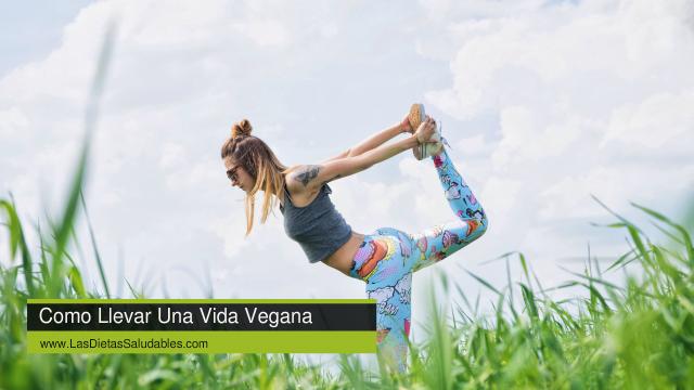 Como Llevar Una Vida Vegana Saludable