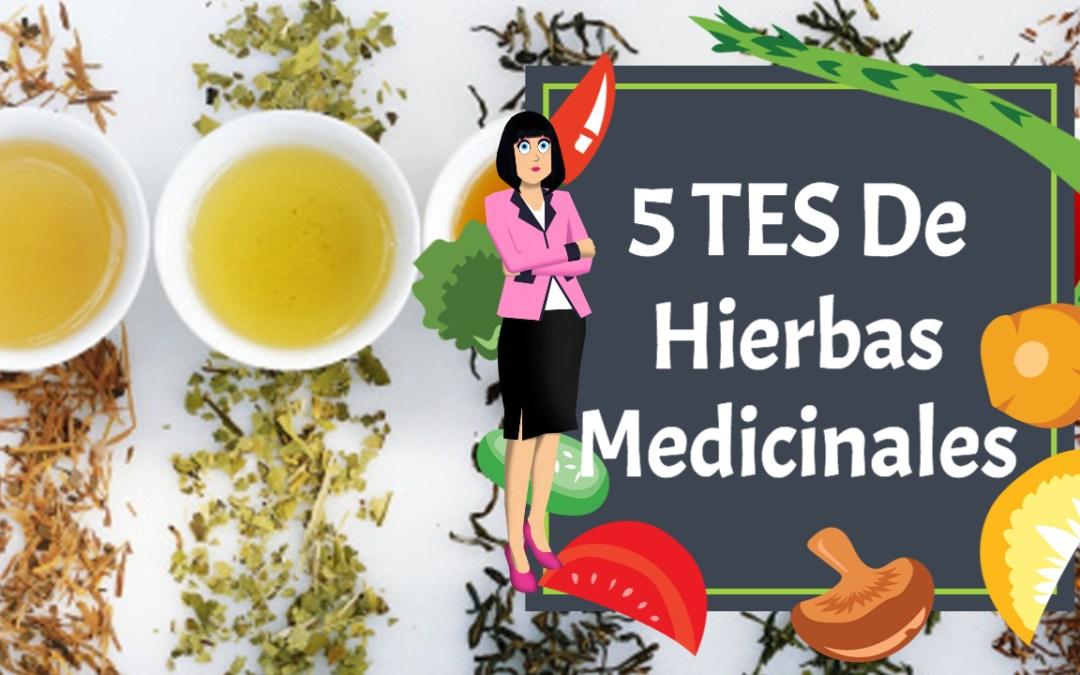 Pruebe estos tés medicinales: tés de hierbas medicinales