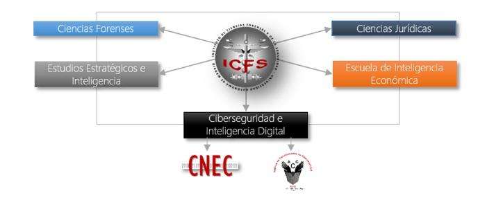 estructura ICFS