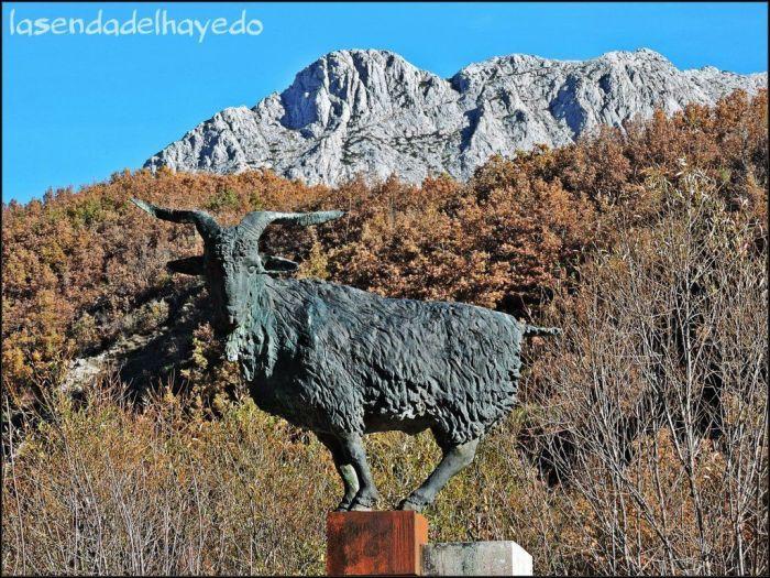 El chivo, símbolo de la comarca