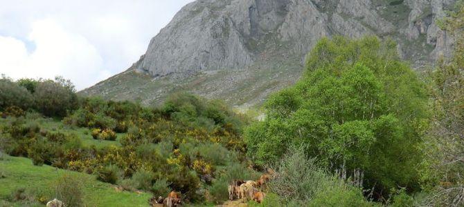 El Valle de Gete – Alto Torío