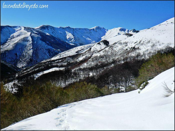 Panorámica de la ladera con orientación sur por la que hemos ascendido