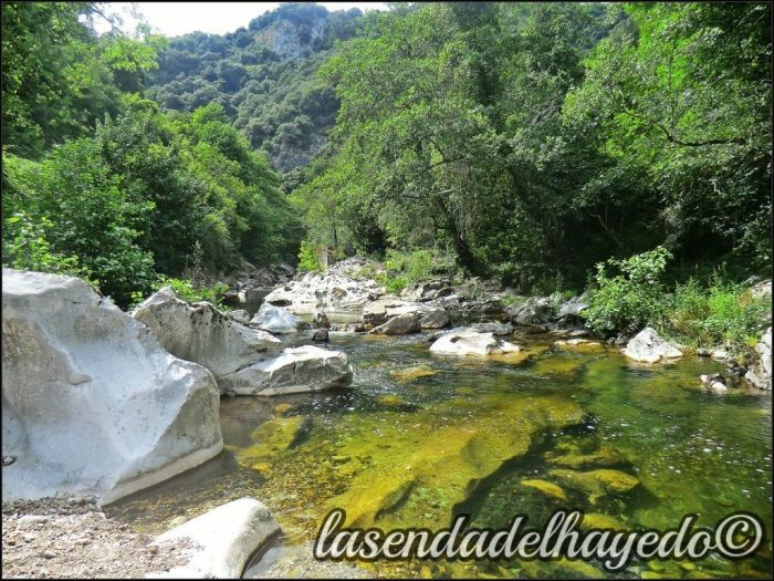 Río Trubia