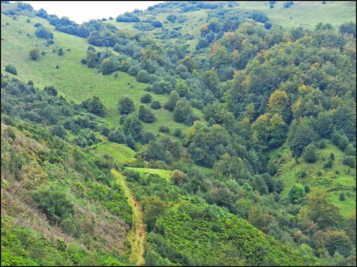 Descenso del Col.laín al valle de la Foz