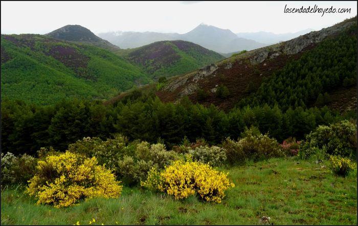 Cercanos a la Collada Lobera, con vistas al valle del Porma