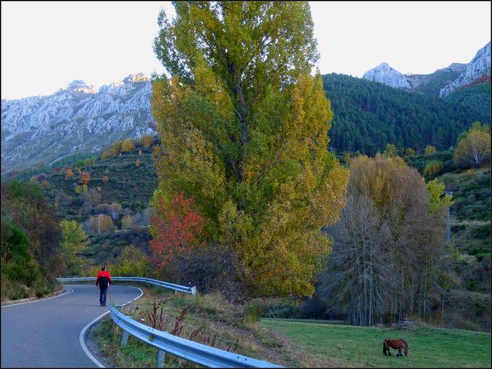 Carretera a Llamazares
