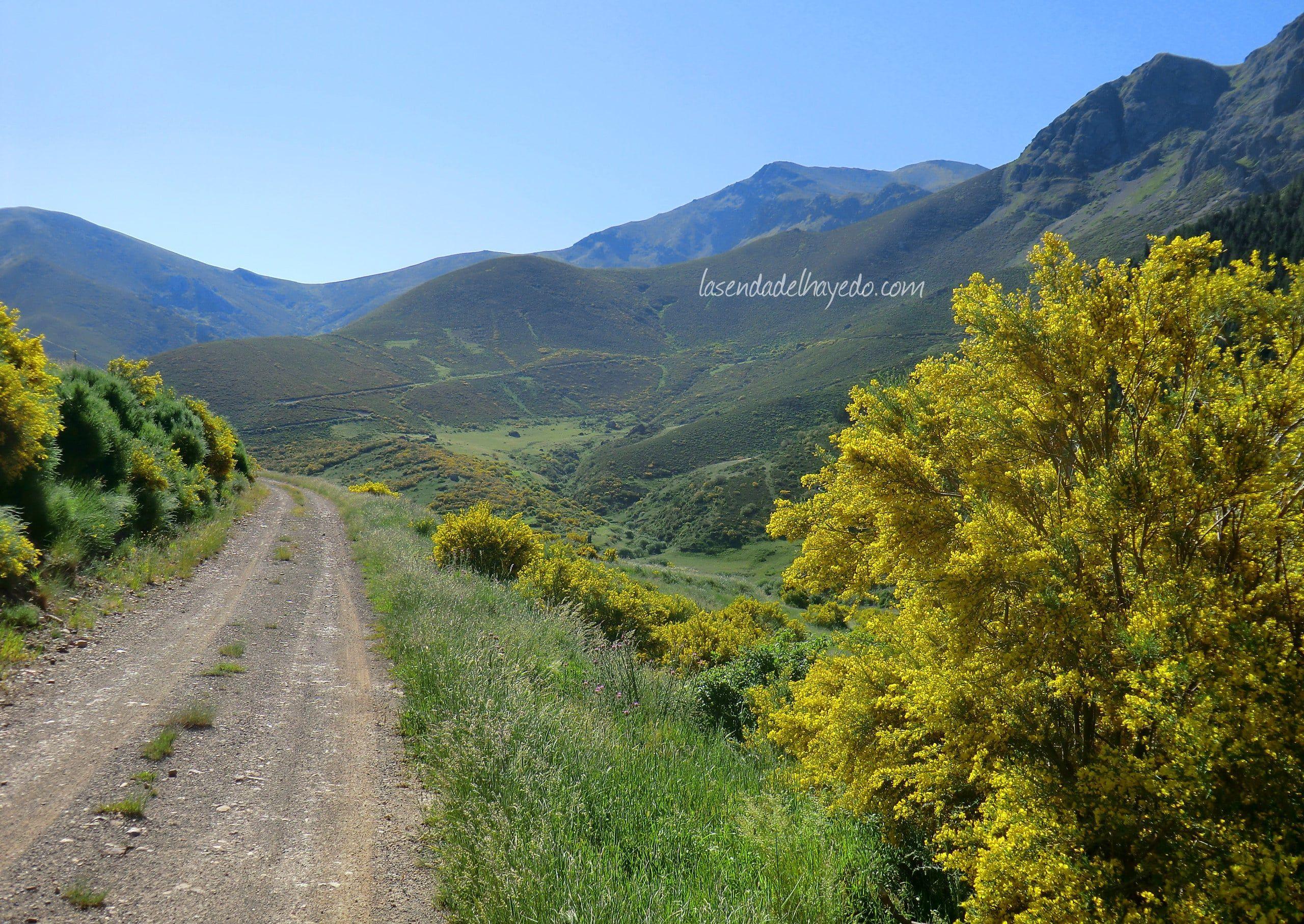 Entrada al Naranco desde Llánaves