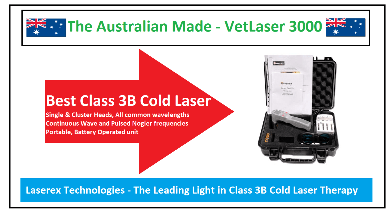 Class 3b laser therapy