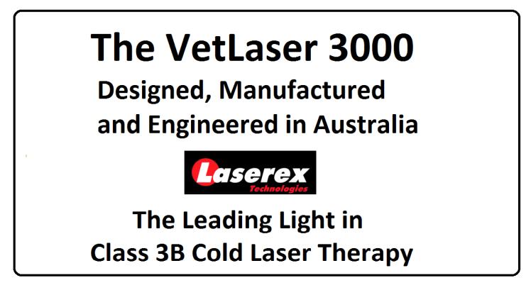 Veterinary Cold Laser
