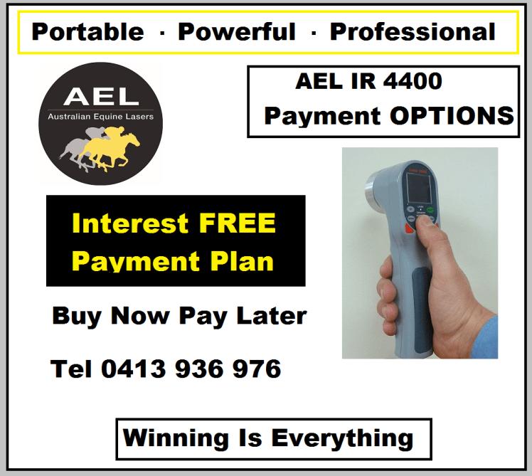 AEL Payment - Copy (2)