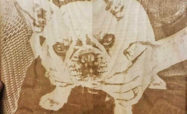 Pet Portrait Custom Engraved on Wood