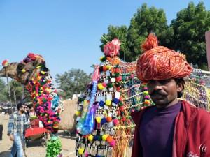 Camel Fair, Puskar India