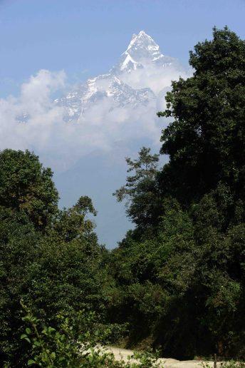Pico del Machhapuchhre, literalmente Cola de Pescado en nepalí, Himalaya