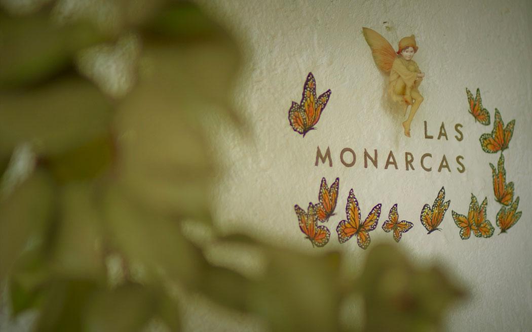 Las Luciernagas - Las Monarcas