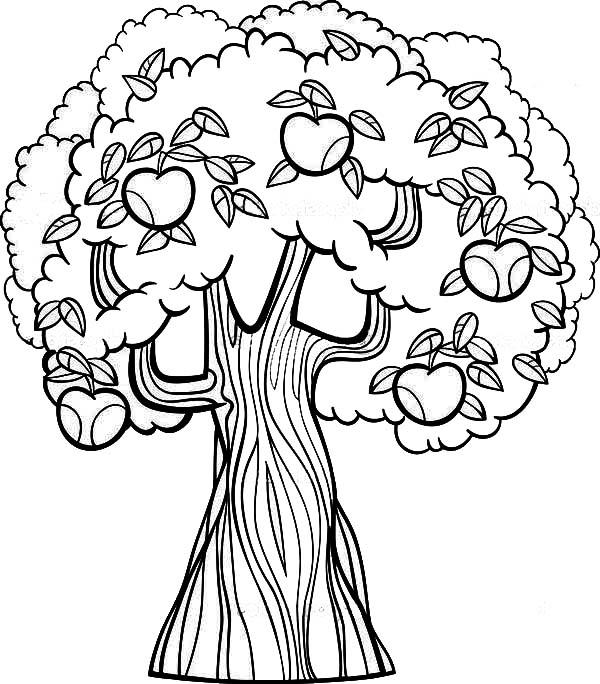 Dibujos De Manzanas Para Colorear Auto Electrical Wiring Diagram