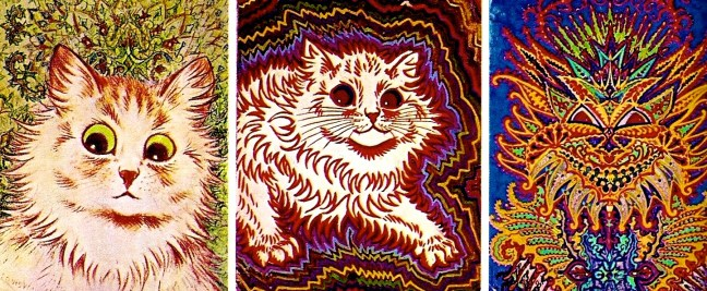 schizophrenic-cat-1