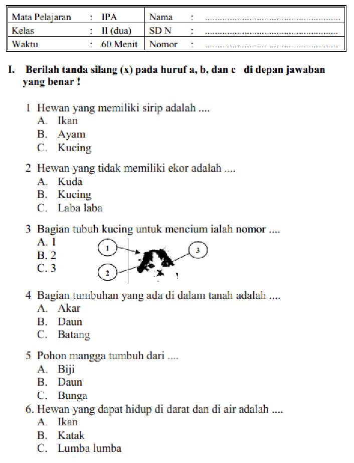 Soal Kelas 2 Sd : kelas, Kelas, Lasopafx