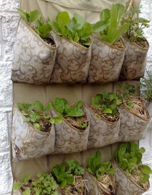 semillero colgador armario