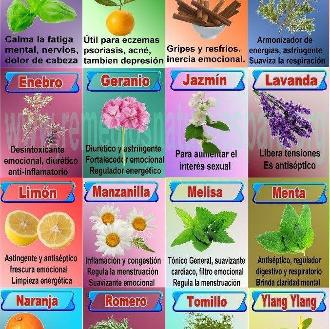 infografía – Aromaterapia