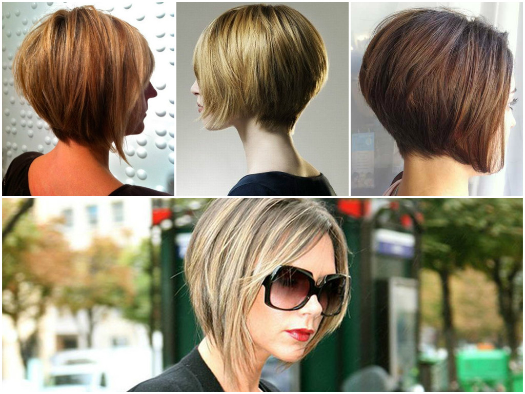 Short Bob Haircuts and Hairstyles  Bob Styles 2017