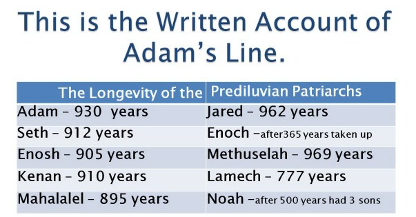 from adam to noah