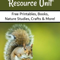 Free Squirrel Unit Study Resources
