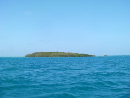 Turneffe Cay
