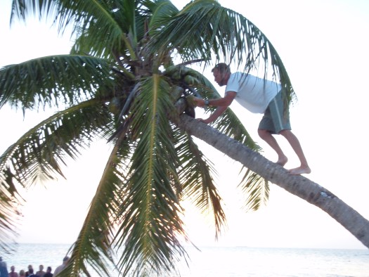 Tadd fetches coconuts for tonights cocktalis