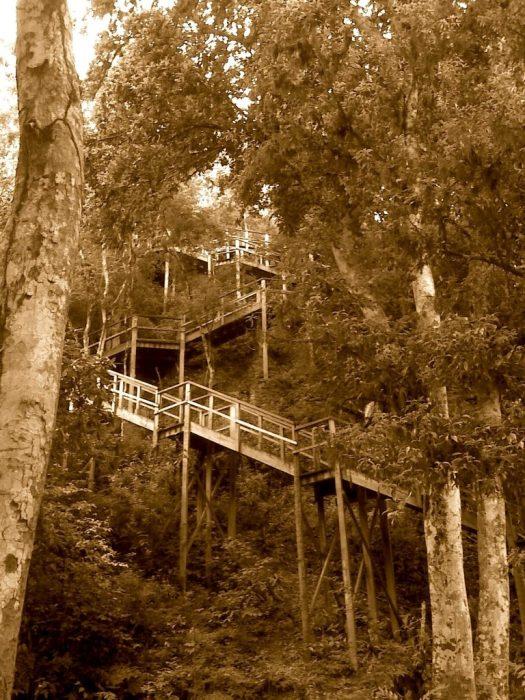 Tikal IV stairs