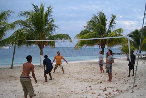 Volley wk14