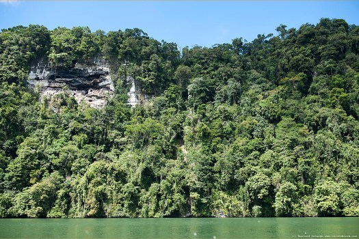 The canyon walls of the Rio Dulce River are astounding