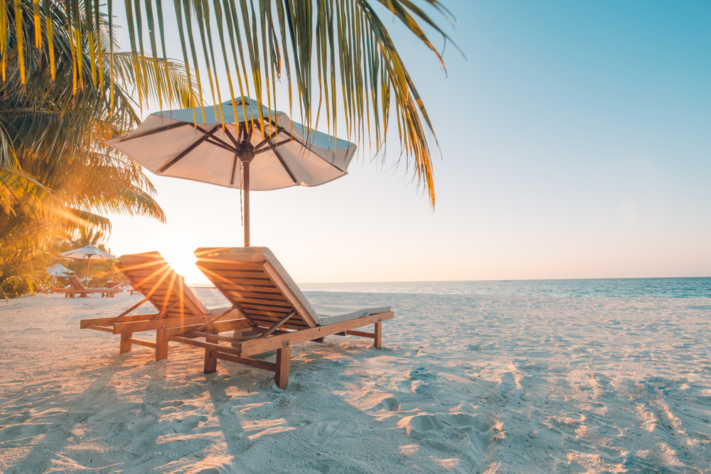Lounge chairs underneath palm trees on a sunny tropical beach