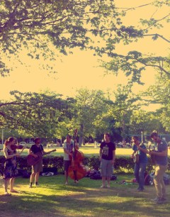 The Vondelpark-sessions