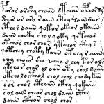 Alcune righe dal manoscritto Voynich