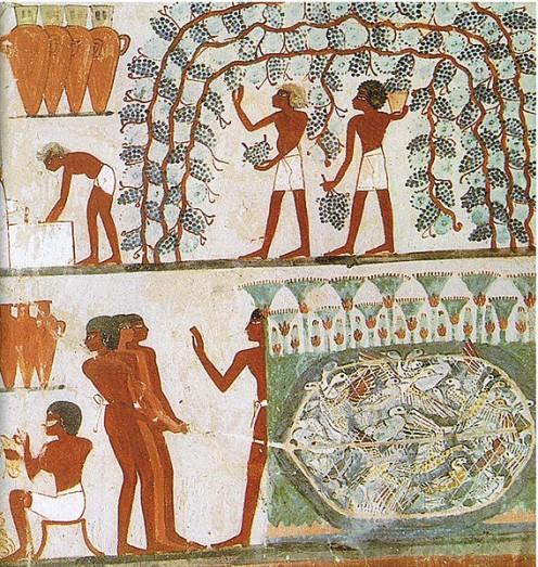 Scena di viticoltura. Particolare. Pittura parietale, Tomba tebana, secondo periodo Intermedio, XVII dinastia, 1552 – 1306 a.C.