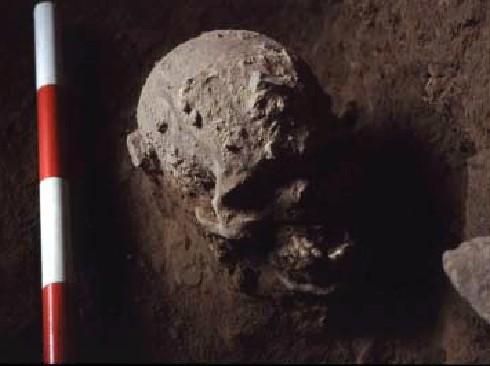 Cranio di Taforalt (Marocco) circa 10.000 a.C.