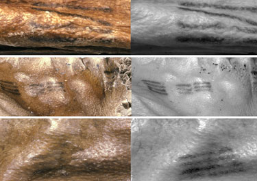 Alcuni dei tatuaggi presenti sulla mummia (Foto: www.iceman.it)