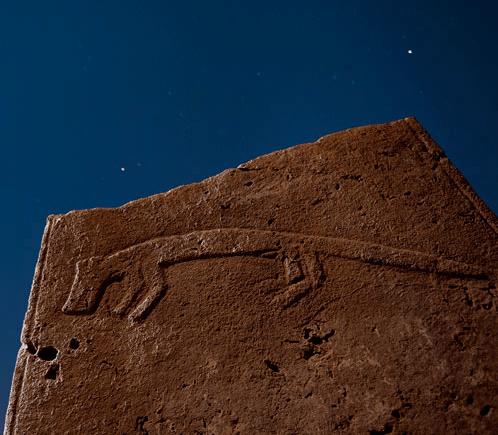Foto di Vincent Musi, National Geographic