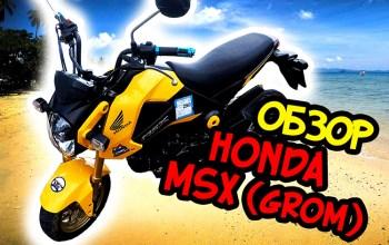 Обзор питбайка Honda MSX 125 (Grom)