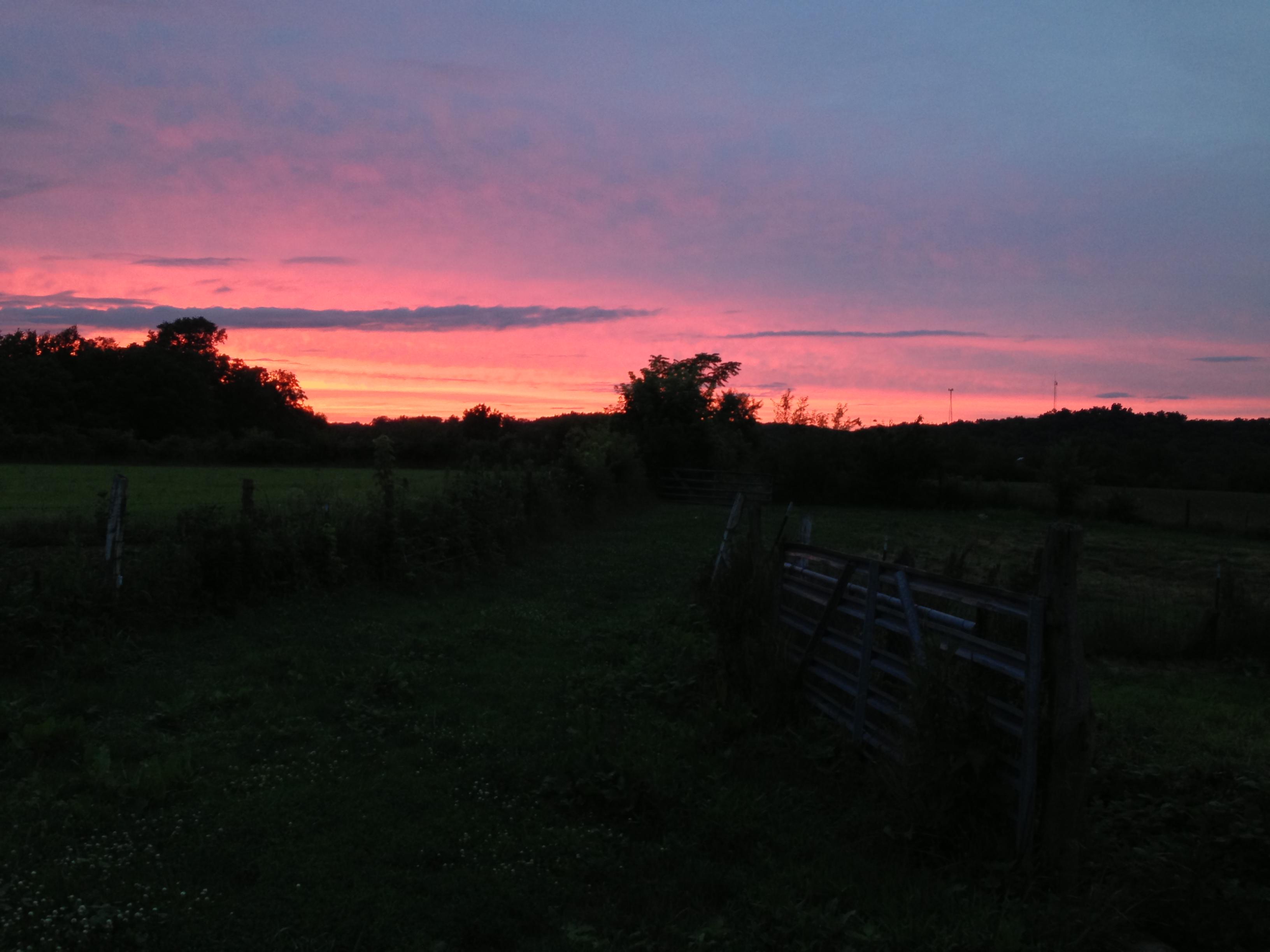 Another Beautiful Sunset on the Farm  Last Train Vineyard