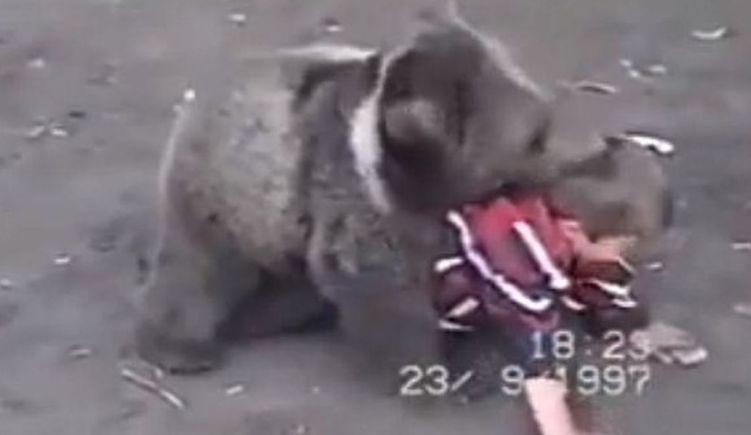 Quand Khabib Nurmagomedov s'entraînait contre des ours à 9 ans