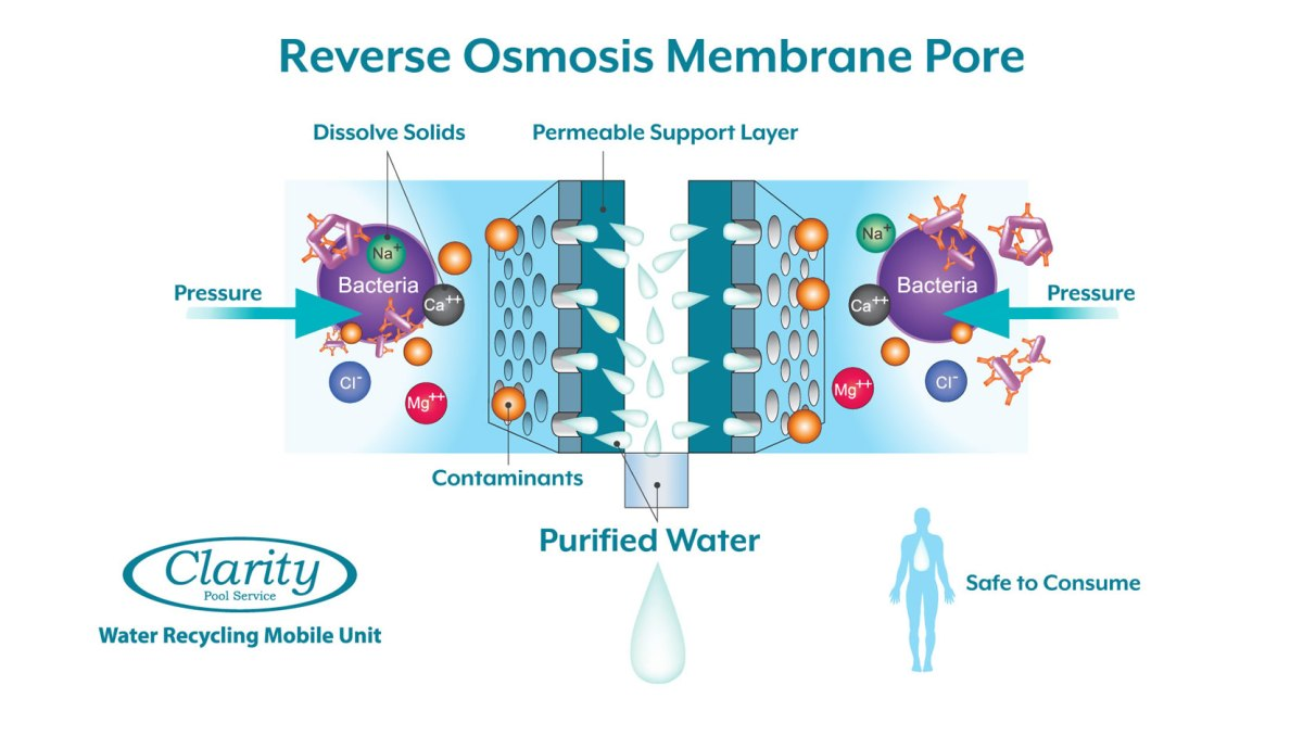 Clarity Pool Service Reverse Osmosis Swimming Pool Water Treatment InfoGraphic