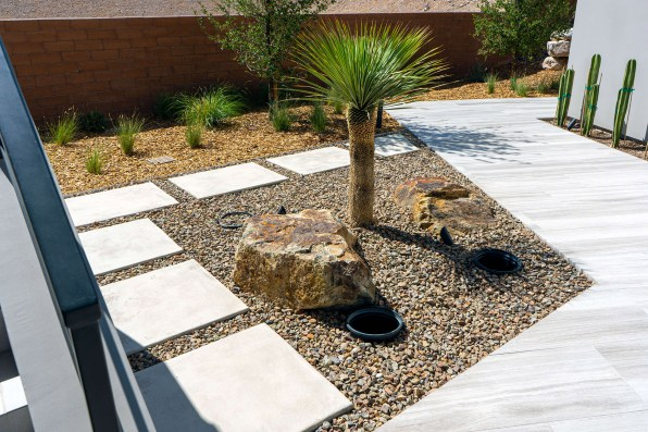 Desert Landscaping Surrounds this Beautiful Modern Swimming Pool Design