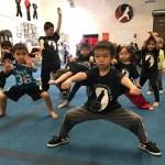 kids wushu class icon