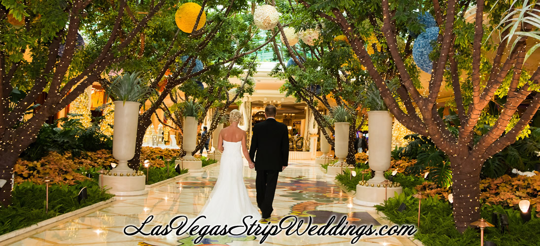 Las Vegas Wedding Packages with Strip. Outdoor and Valley of Fire Specialties