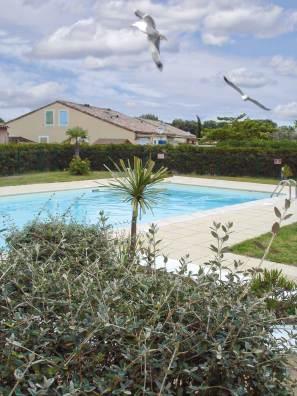location-en-camargue-labas_piscine