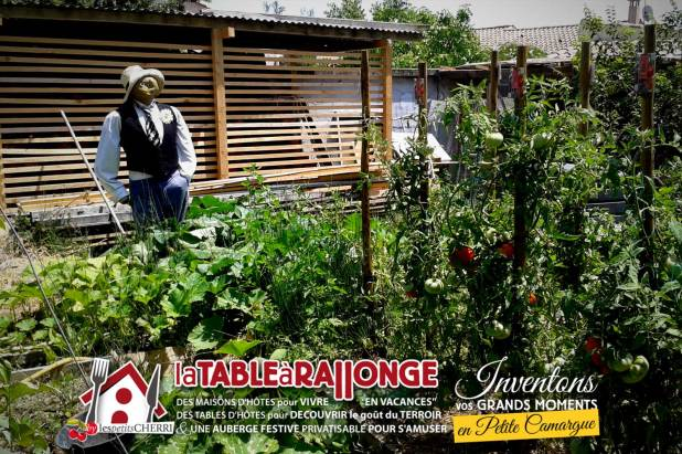jardin-potager-epouvantail-2