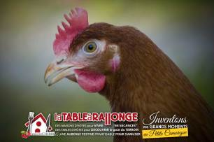 jardin-potager-poule-3