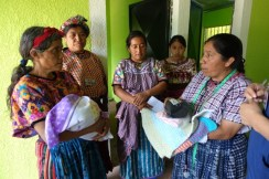 Maya Midwifery International