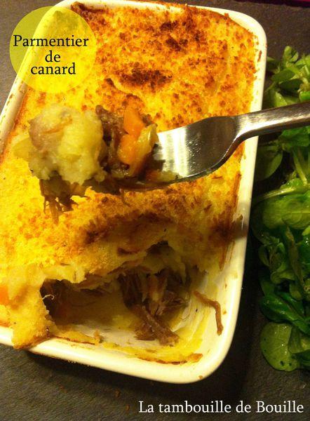canard2